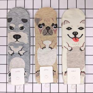 Doggo Socks Bundle